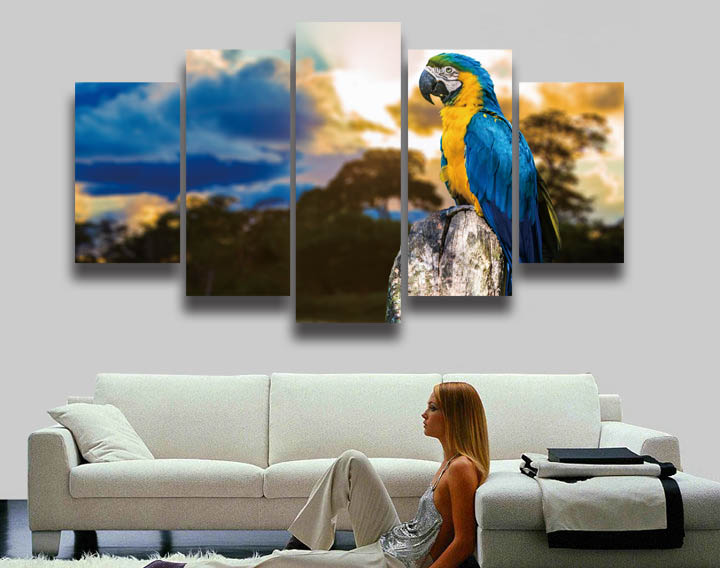 2016 Sale Promotion Oil Painting Bird Parrot Animal Painting On Canvas 5 Panels Wall Art Home Decor Print Hd Picture