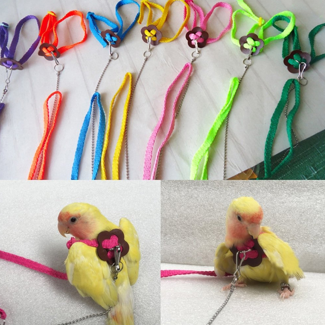 Adjustable Colorful Parrot Bird Leash Outdoor Harness Training Rope Flying Cross Band 120cm