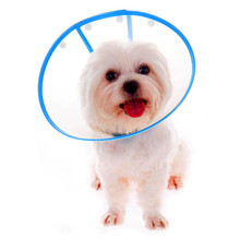 Lovely Elizabeth Protective Headgear for Pet Bathing Grooming Beauty Medical Bite Prevention Soft Cotton Dog Collar with 4 Color
