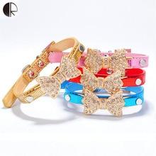 Trendy, beautiful dog collar