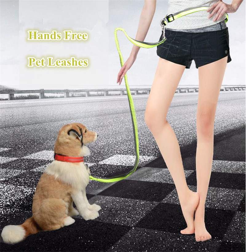 B36 hands free pet Leashes Nylon dog Pull strap for meidum and big dogs