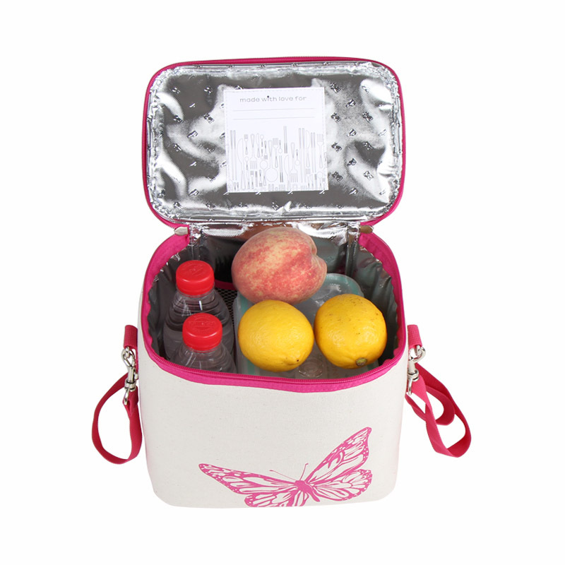 Outdoor picnic bag camping portable coolers portable fridge ice box for a picnic beer refrigerator bags family picnic basket