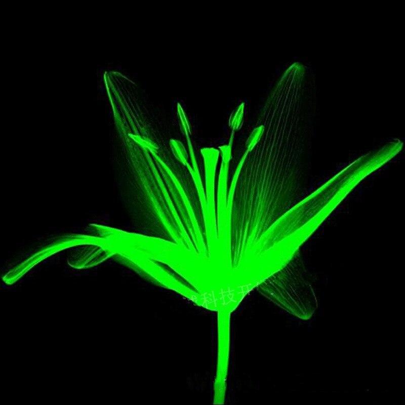 100g Ultra Green Glow In The Dark High Gloss Luminous Powder Environmentally Friendly Luminescent Ink Paint