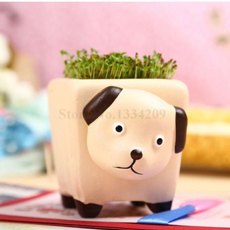 100+ [ Flower Pot Plant ] ...