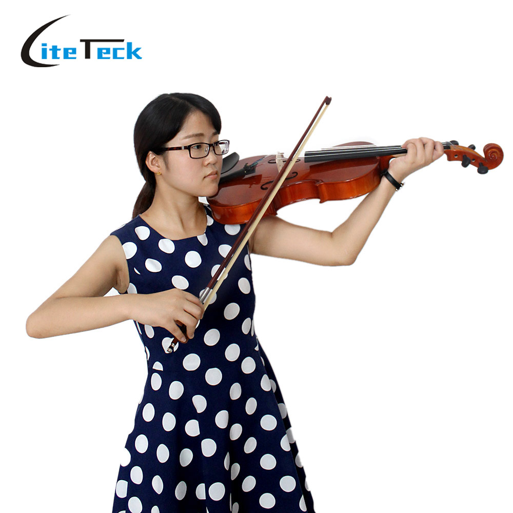High Quality 4 4 Full Size Viola Solid Maple Viola Imitating Ebony Fingerboard with Case Bow