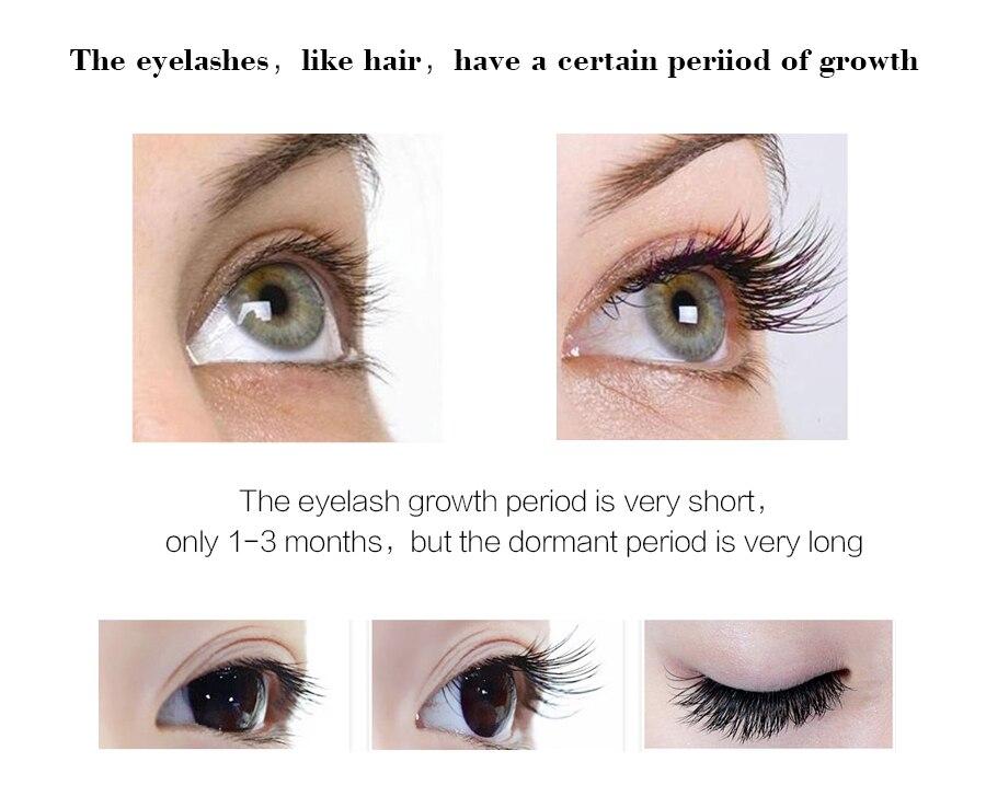 734706ada39 Detail Feedback Questions about EFERO Eyelash Serum For The Growth ...