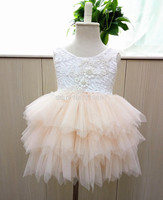Retail 2016 Girl Summer Lace Princess Tutu Dress Princess Dress Summer Dress Girl RM03