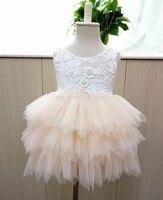 Retail 2016 Girl Summer Lace Princess Tutu Dress Princess Dress Summer Dress Girl RM03