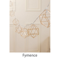 4M 40 LED Rose Gold Copper Wire LED String Light Iron Geometric Hexagons With 3 AA