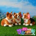 Envío gratis 25 CM Corgi galés Pembroke peluches simulación artesanía de peluche de juguete cachorro de perro de peluche muñecas regalos para los niños