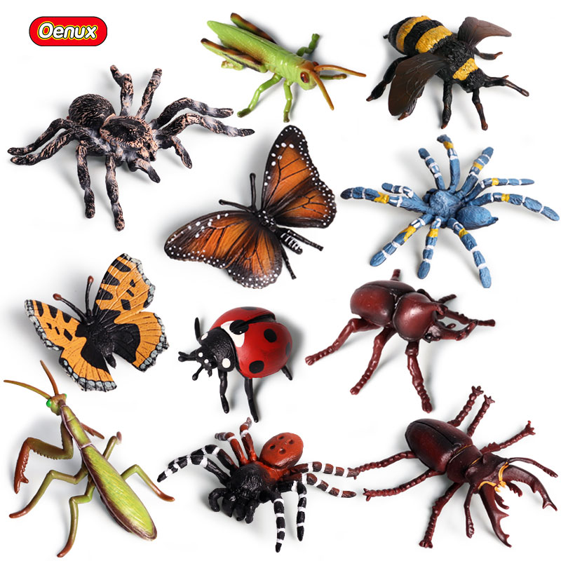 Oenux 11pcs/set High Quality Paintting Pvc Insect Model Simulation Butterfly Bee Grasshopper Spider Animals Action Figure Toy Toys & Hobbies