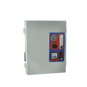 Swimming Pool Water Filter Purifier System 12-16 g/hr 110V 220V GQO-V16