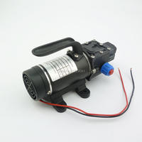 100w 8Lpm small electric dc 12v 24v diaphragm water pump automatic pressure switch high pressure self priming spray pump