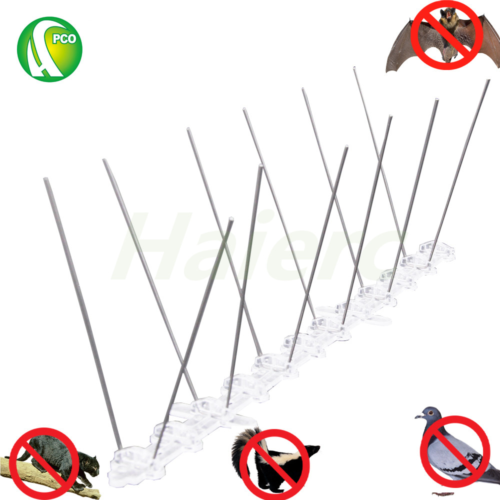 PCO Stainless Steel Bird Spikes Anti Pigeon Pest Control Bat control Cat Covers 3m Set of 10 in Traps from Home Garden
