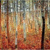 Hand painted Canvas Art Gustav Klimt Landscapes paintings of Forest of Beech Trees oil artwork Reproduction wall decor quality