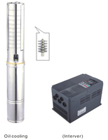 High Low Pressure Solar Submersible Well Pump For Garden Watering 4SPSC25 140 D380 5500