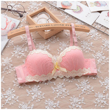 Japanese garden style cotton embroidery girl student underwear cute chiffon small chest gather bra