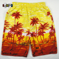 Summer Men`s Beach Shorts Hawaiian Hawaii Floral Printed Plus Size Oversized Loose Baggy Board Wear Casual Short