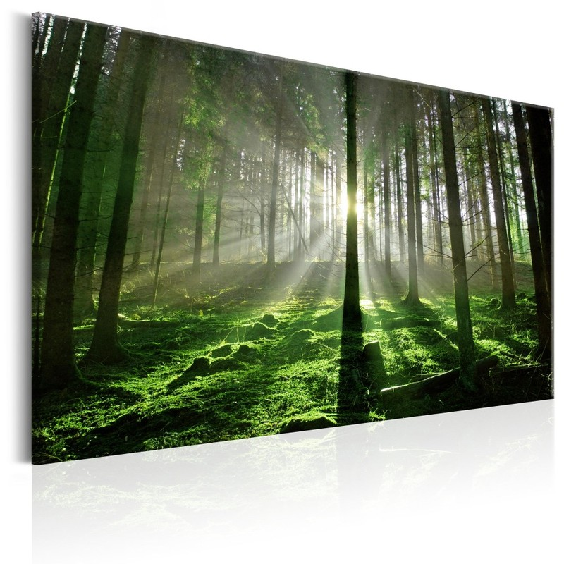 DIY Framed Canvas Painting Photo Printed on Canvas Emerald Forest Picture Photography Print Living Room Art Decor