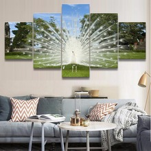 Wall Art Canvas Pictures For Modern Living Room Decor Framework 5 Pieces Animal White Peacock Paintings HD Printed Poster