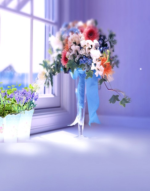 New Arrival Background Fundo Glass Vase With Flowers Width