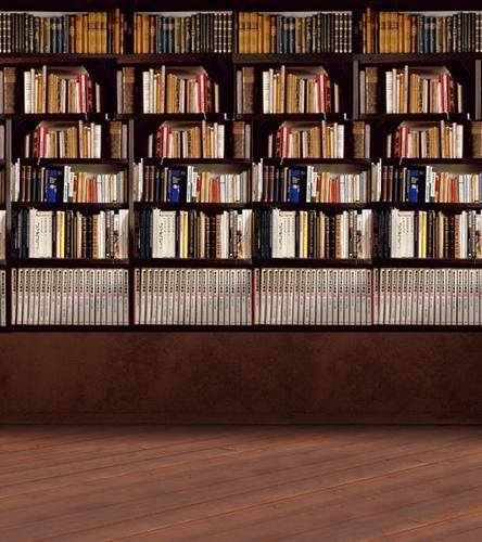 10ft Photography backdrops school library for graduation photo studio vinyl cloth study room photographic backgrounds CM-0892 allenjoy photography backdrops book shelf in library graduation season background for photo studio