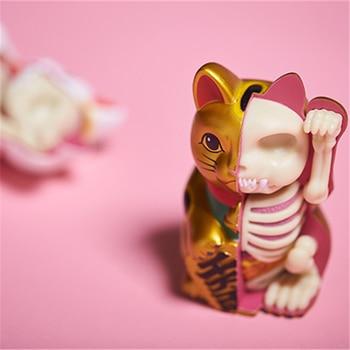 4D Golden money cat Intelligence Assembling Toy Assembling toy Perspective Anatomy Model DIY Popular Science Appliances фото