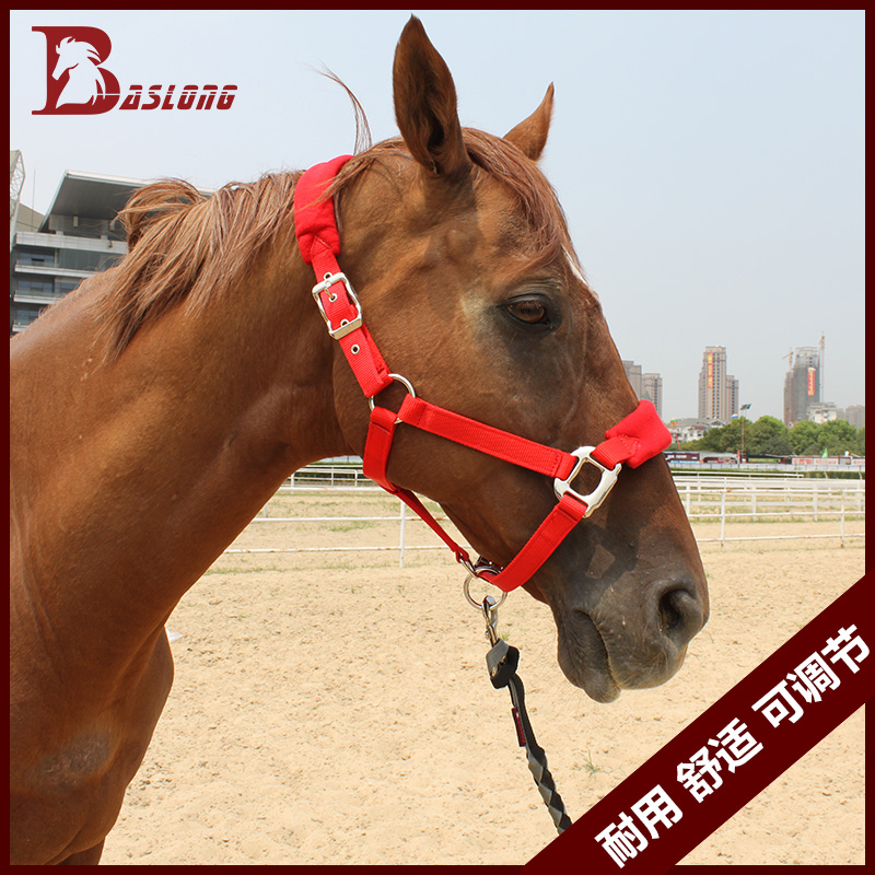 Купить с кэшбэком antifriction Nylon Horse bridle horse saddleries supplies adjustble size halter equestrian multi color