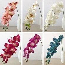 10p white/pink/fuchsia/purple/green/blue Orchids Flower