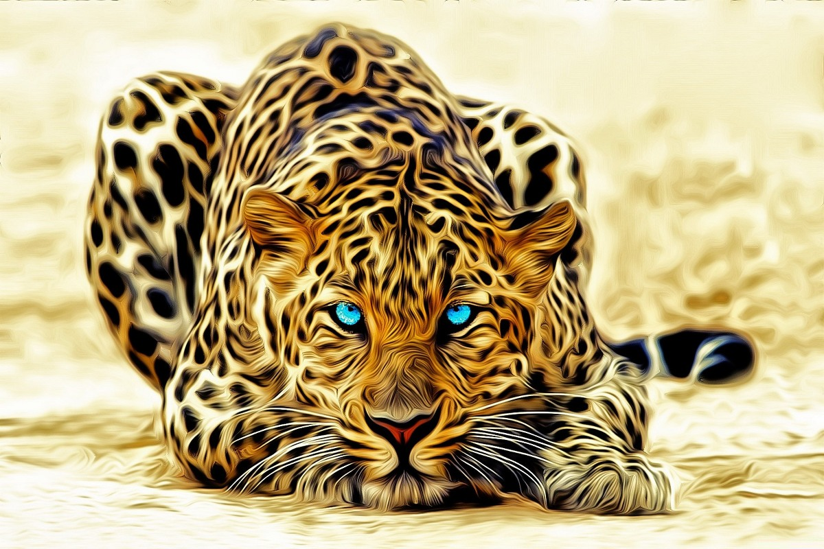 canvas fabric poster custom print leopard artwork PDW121 for wall ...