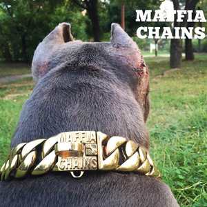 Metal Stainless Steel dog collar Steel Chain Martingale High-end custom Show Collar Bully dogs Doberman Adjustable Safety(China)