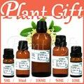Al por mayor!! compras Libres de aceite esencial Puro aceite esencial de cuidado de la piel aceite de piel osmanthus aceite puede purificar el aire blanqueamiento