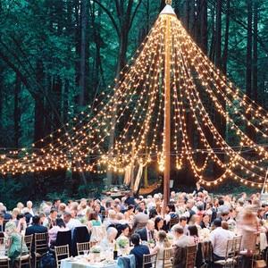10M Led Globe Light String hol