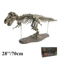 28/70cm 4D Dinosaur Assembling Skeleton Model Tyrannosaurus Rex Excavation Science Fossil Skull Large Dinosaur Model Decoration
