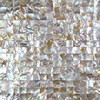 Natural Iridescent Color 100 Natural Chinese Freshwater Shell Mother Of Pearl Mosaic Tile For Interior House