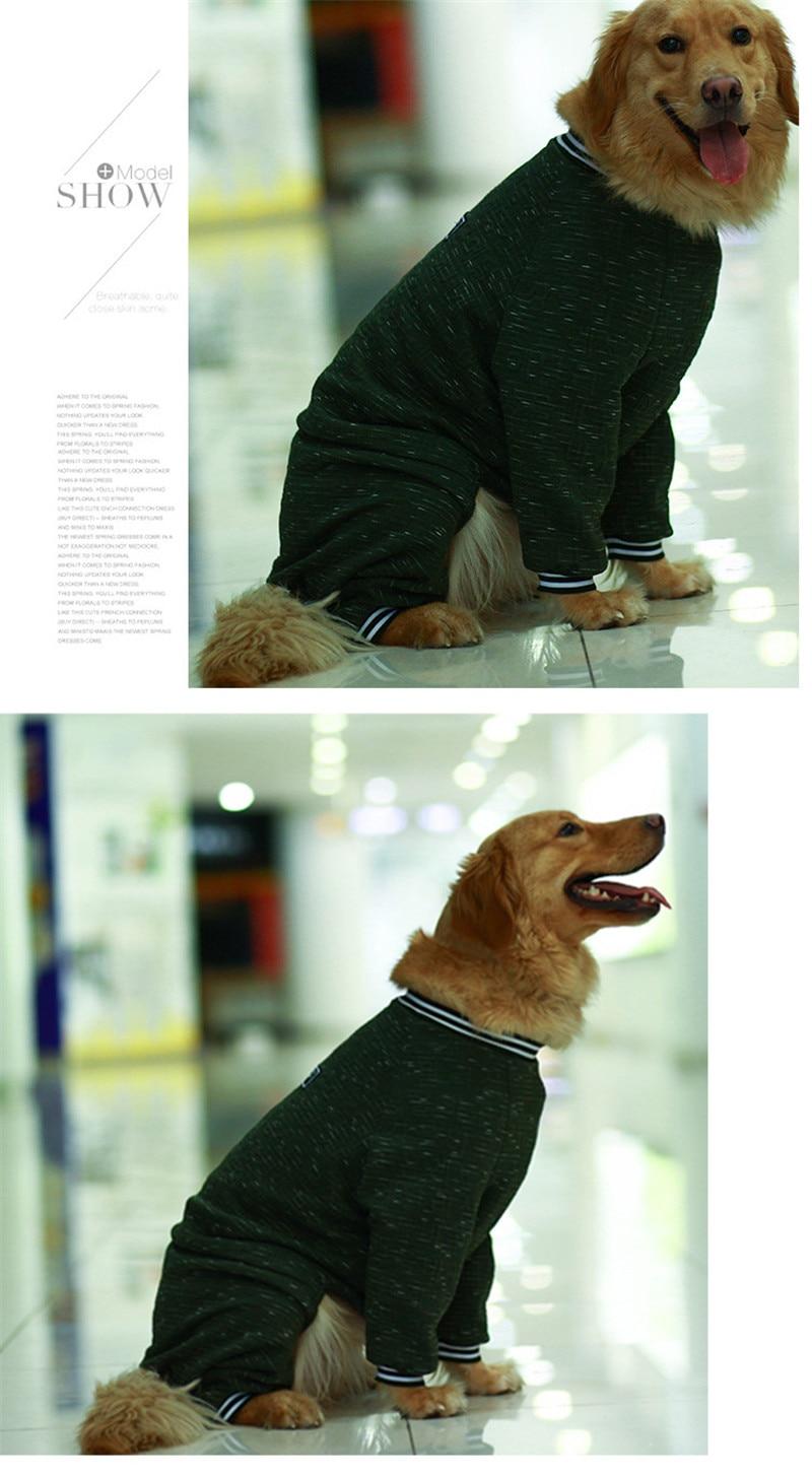 dog coat jacket winter (1)
