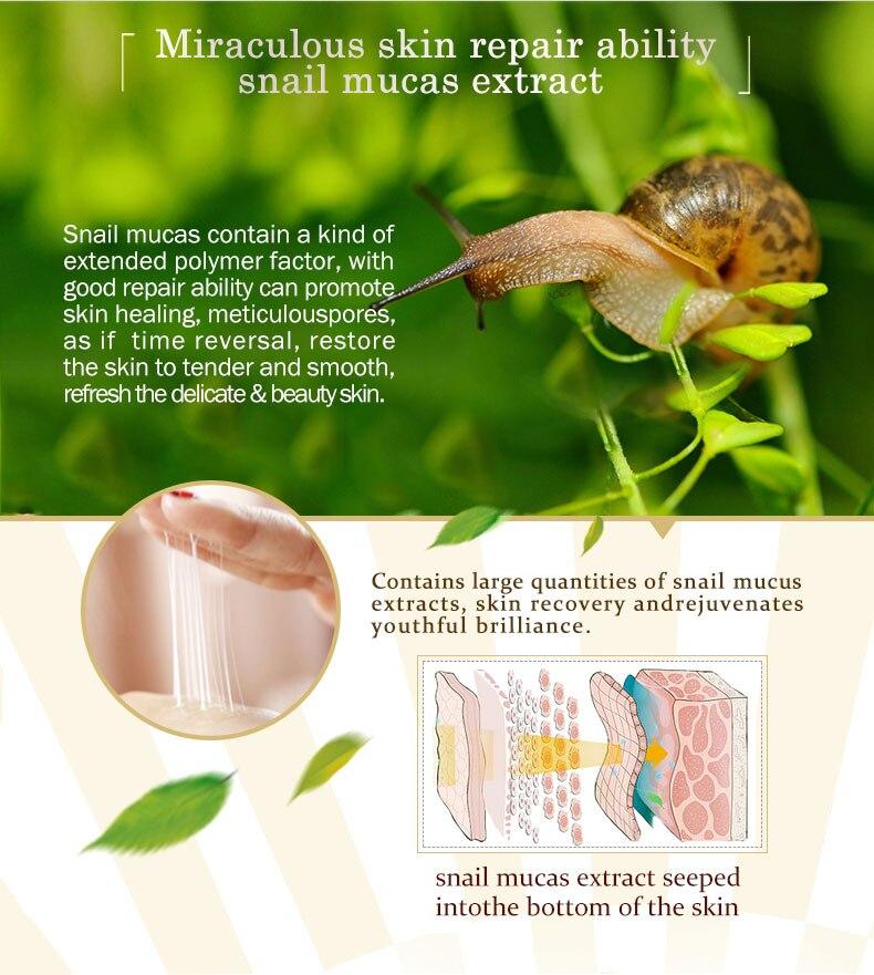 snail-face-cream_05