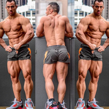 New Summer Mens Shorts Gyms Fitness Bodybuilding Casual Jogg