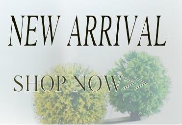 new_conew1
