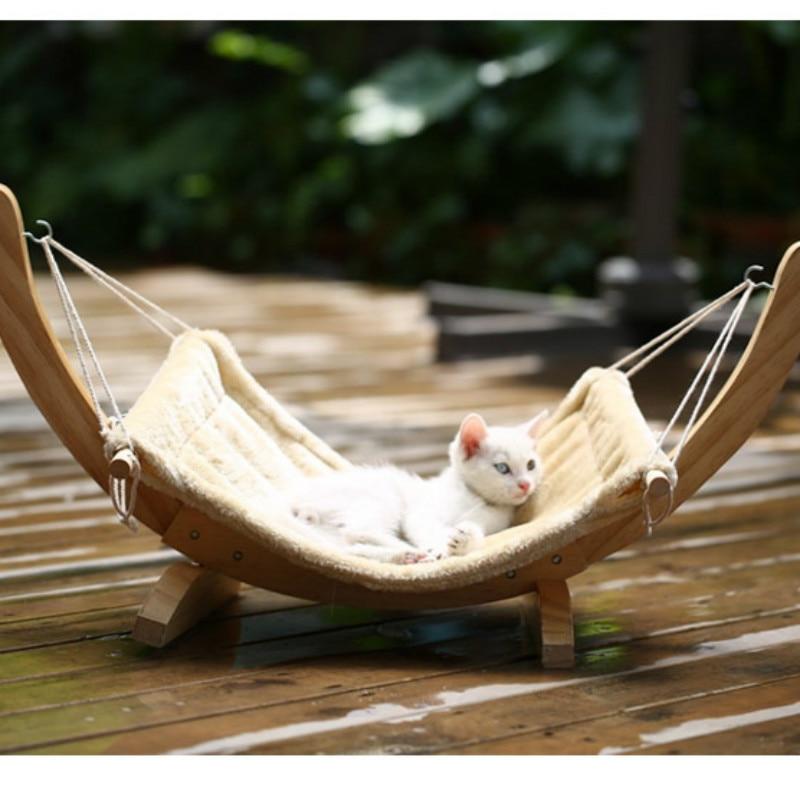котенок в гамаке фото