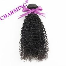 Charming 8A Malaysia Virgin Hair With Closure 100% Unprocessed  Curly Virgin Hair 2 Bundles With Closure Human Hair Bundles