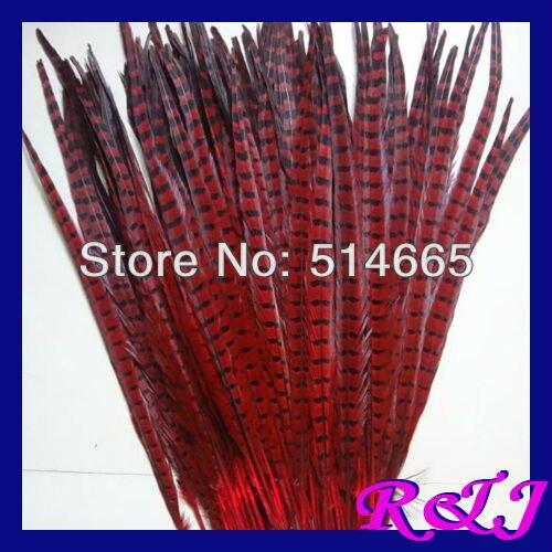 El ccsme libera el color ROJO 20-22 de las plumas de la cola del - Artes, artesanía y costura