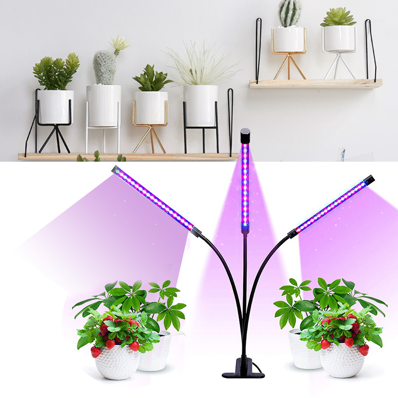 LED Fitolampy USB Grow Light Lamp For Plants Phyto Lamp Fitolamp Full Spectrum Seedlings Plant Lamps With Controller For Home