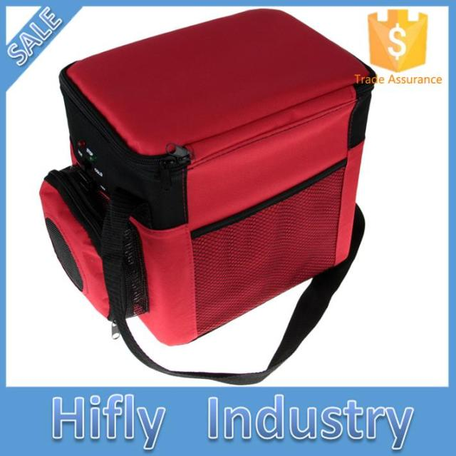 12V 6L Mini Portable Car Refrigerator Refrigeration and Heating Dual Use Car Cooler Box Free Shipping