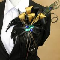 New Free Shipping male woman luxury men's Rhinestone wings withbadgesorepaulets stage golden tassels brooch feather presided