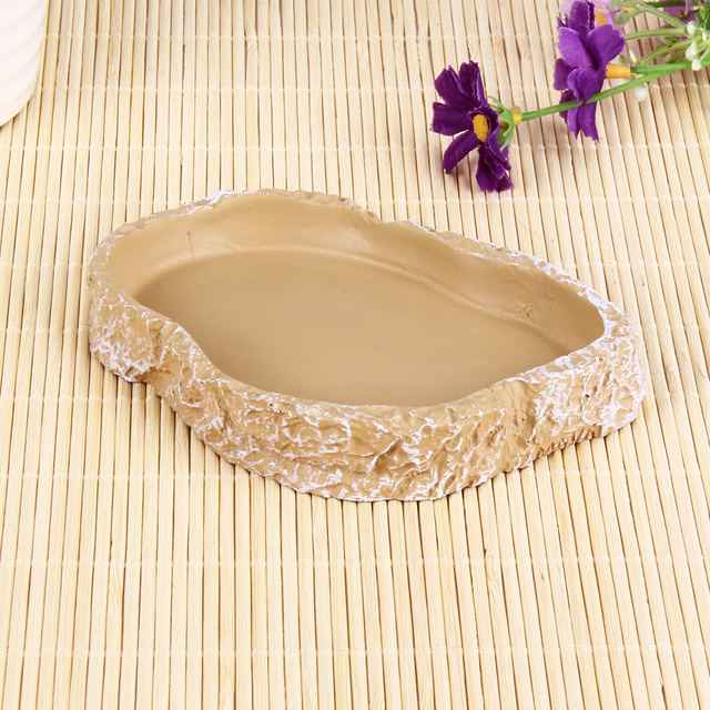 Bowl for Reptile