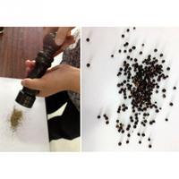 Vintage Wooden Manual Wooden Cruet Pepper Mill Condiment Kitchen Oak Grinder Pepper Grinder Spice Milling Machine spices grinder machine