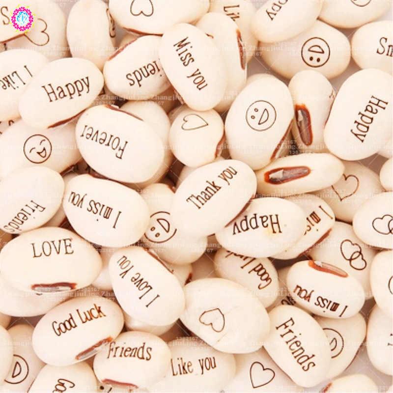 5PCS mini magic white beans seeds gifts plant message word office bonsai green home decoration random send