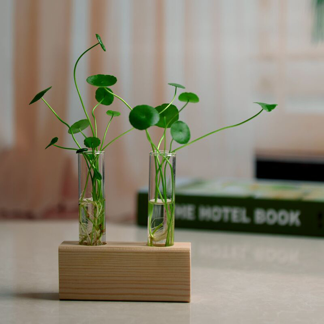 2pcs Crystal Glass Test Tube + Vase Flower Pots with Brush +1pc Wood Stand Base Hydroponic Plants Home Office Decoration 1