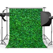 Four Leaf Clover Backdrop Spring Green Grass Meadow Nature Outdoor for Photo Studio Background